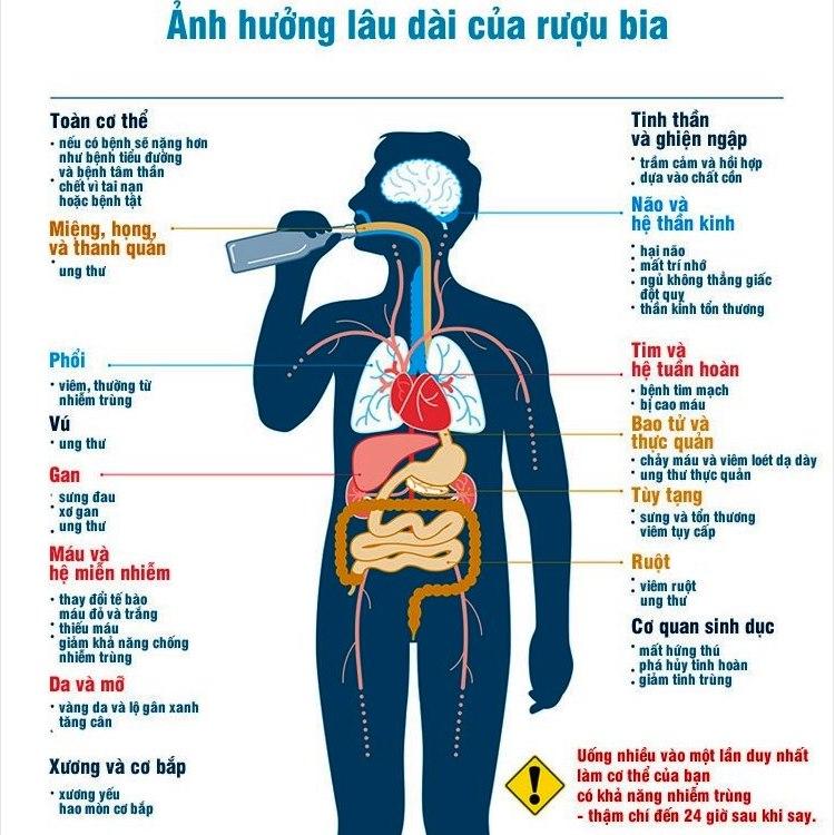 Tác hại của rượu bia với cơ thể